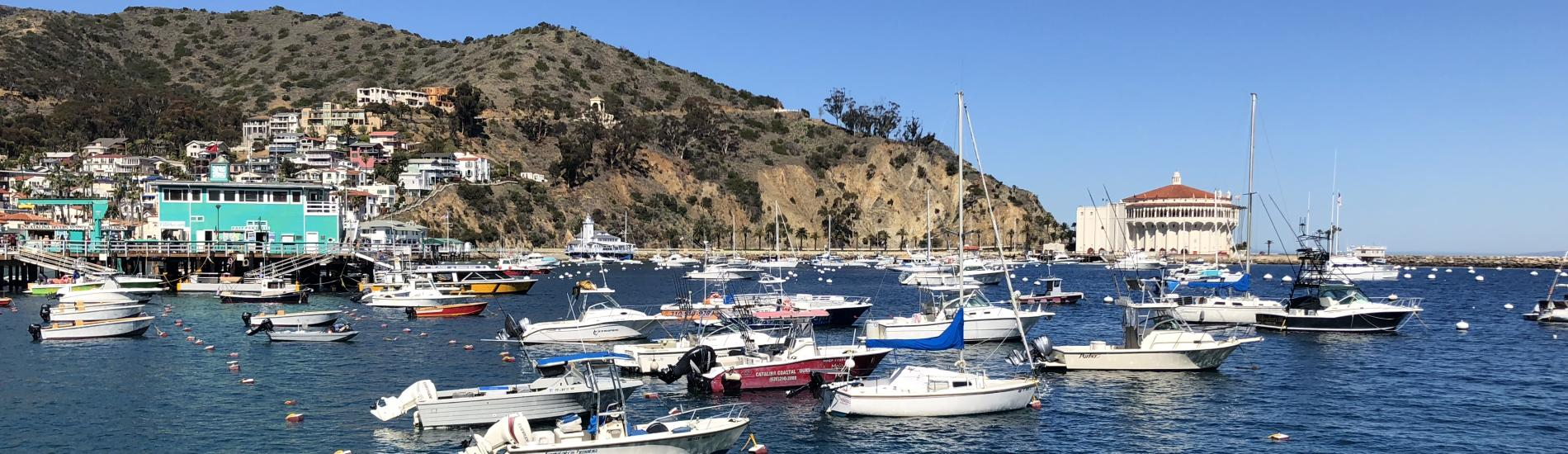 Boats in Avalon Harbor