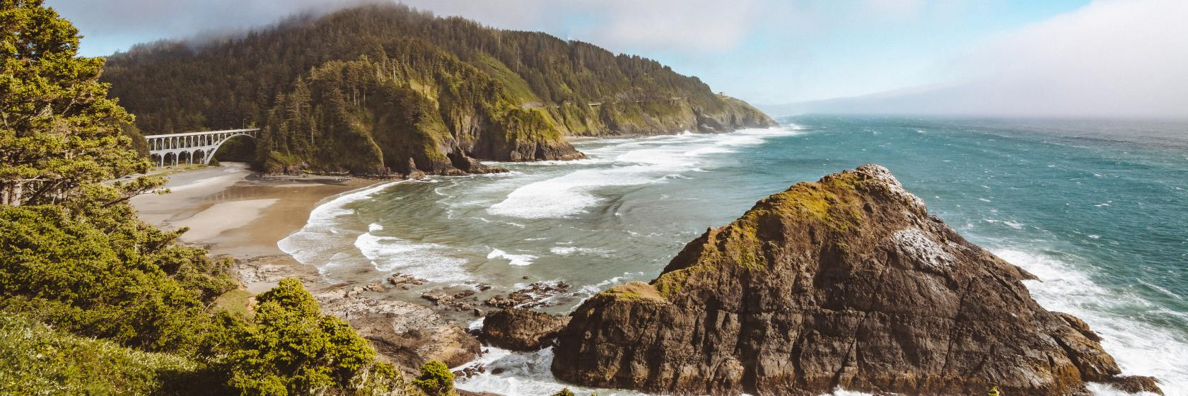 Oregon Coast by Taylor Higgins