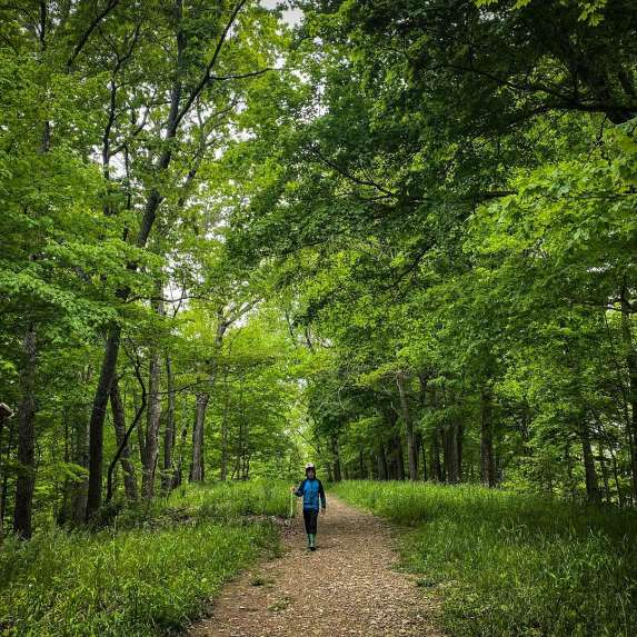 Boy walking on a path surrounded by trees carrying a walking stick at the Amy Weingartner Branigin Peninsula