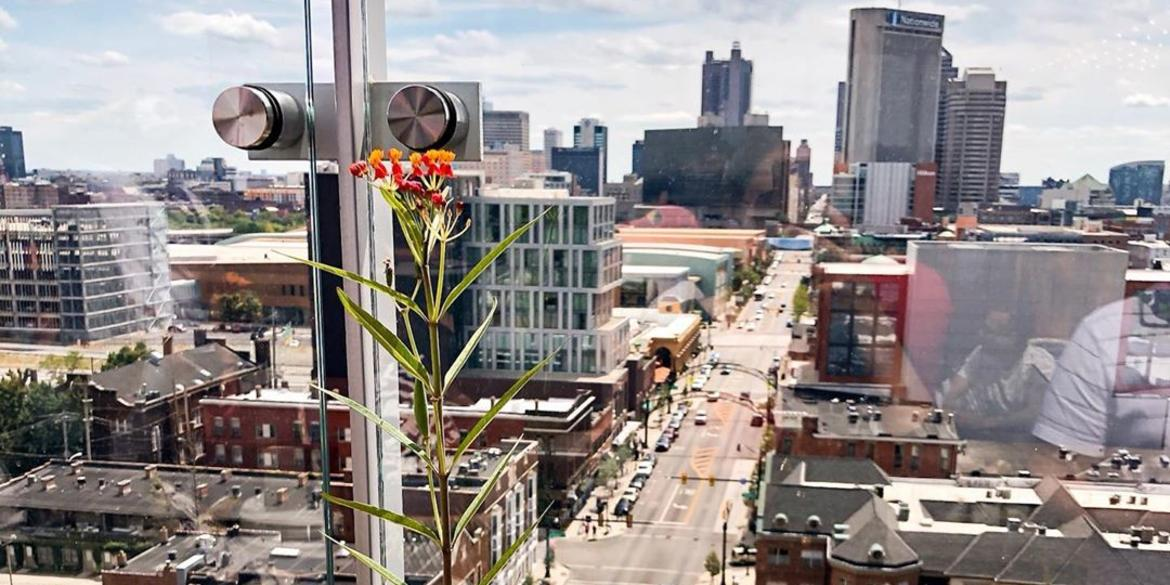 A view of downtown Columbus from Lincoln Social Rooftop