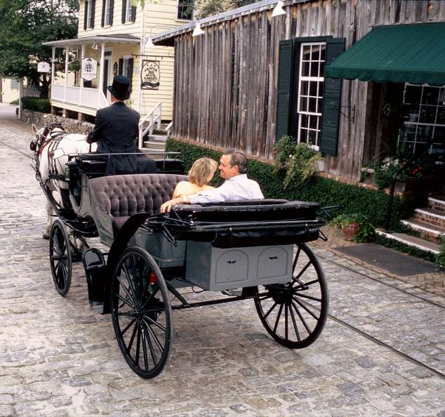 Couple in Horse Carriage