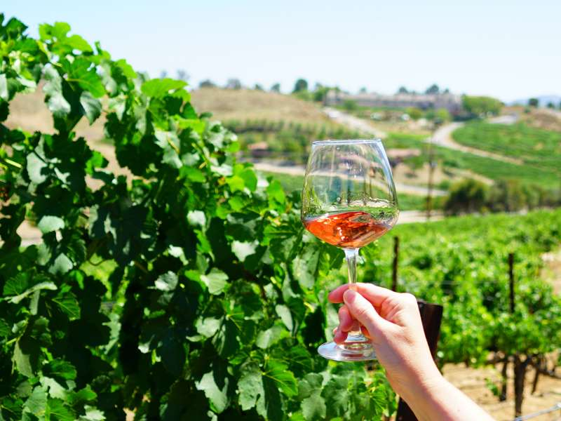 Temecula Valley Wine Month
