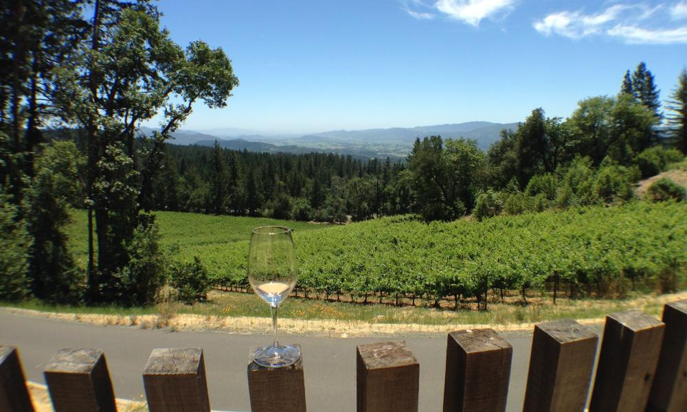 Cade Winery in Angwin