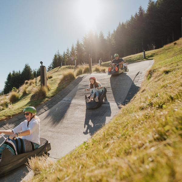 Family riding the Skyline Luge in Summer