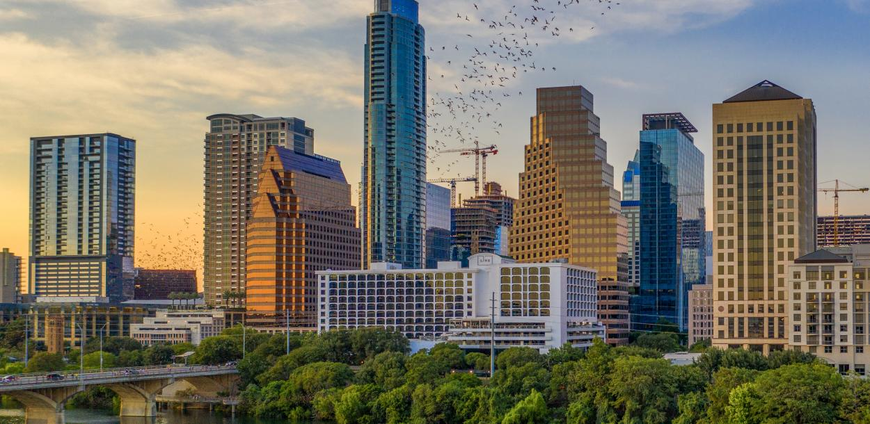 bats flying from the congress bridge in front of Austin skyline at sunset