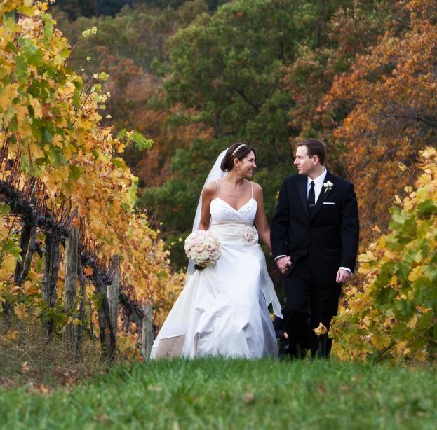 Albemarle Wedding