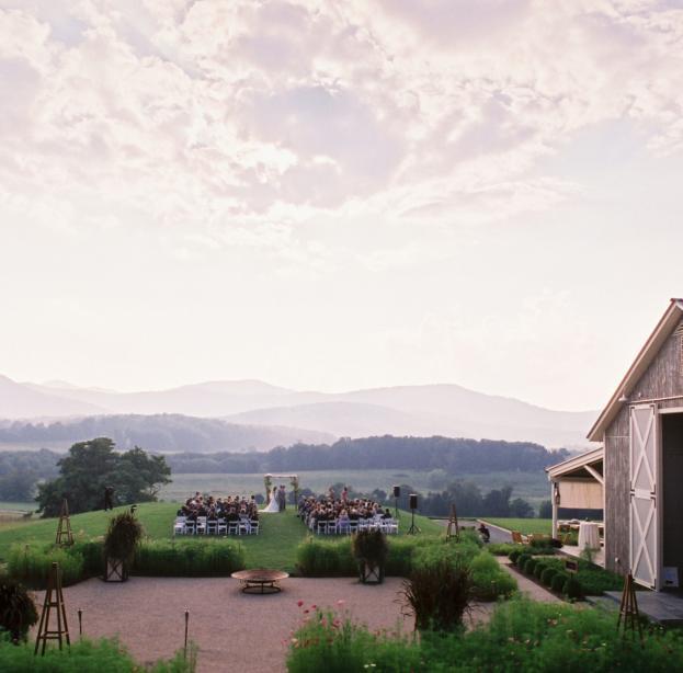 Pippin Hill Vineyard Wedding