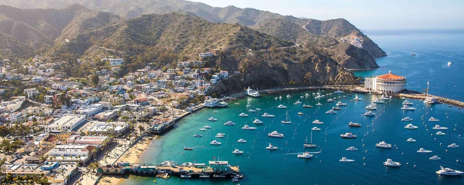 Covid 19 Update Catalina Island Company Operations Status