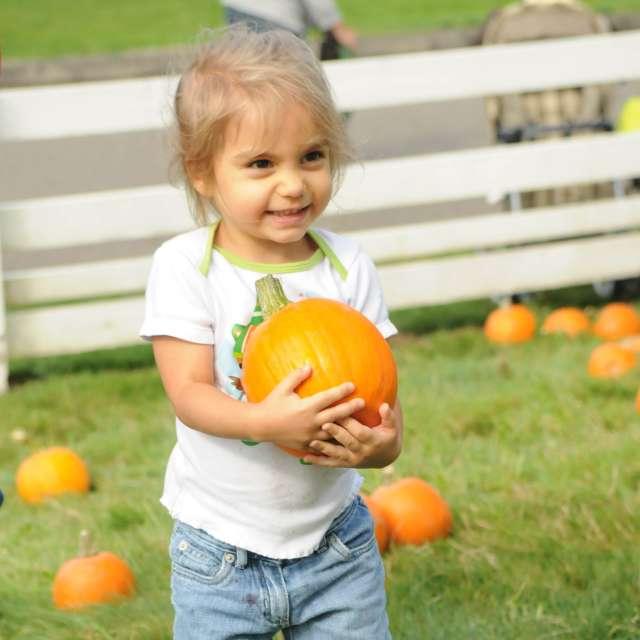 Girl with Pumpkin at Creek Farm Fair