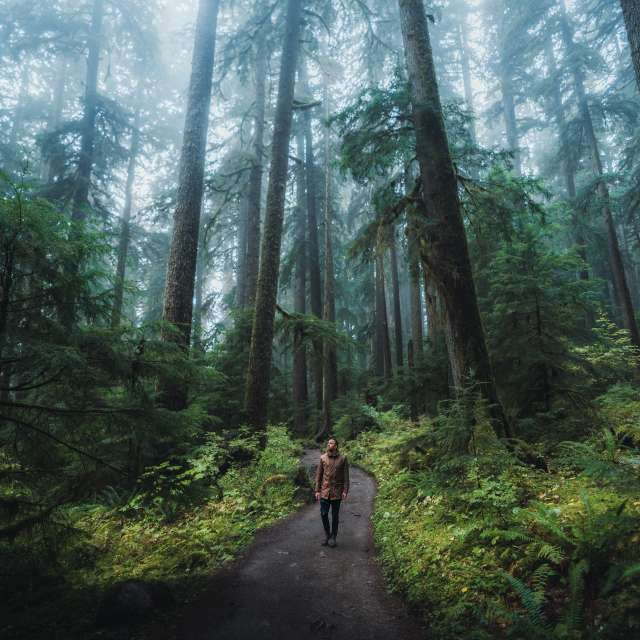 Picture at Olympic National Park, taken by @HelloEmilie & @JasonCharlesHill during their trip to Bellevue. Picture at Olympic National Park, taken by @HelloEmilie & @JasonCharlesHill during their trip to Bellevue.