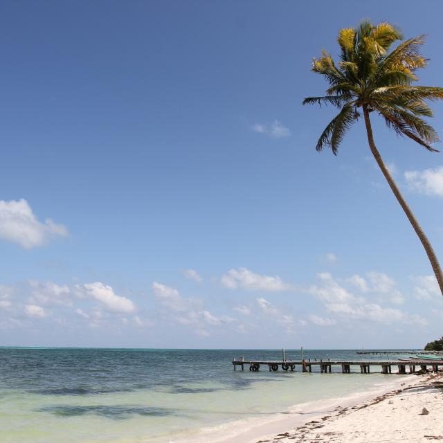 Punta Allen Beaches