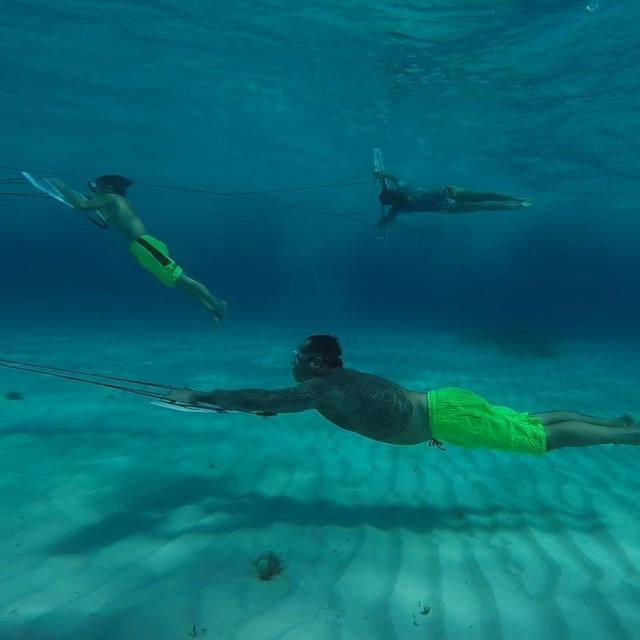 Underwater Subwing