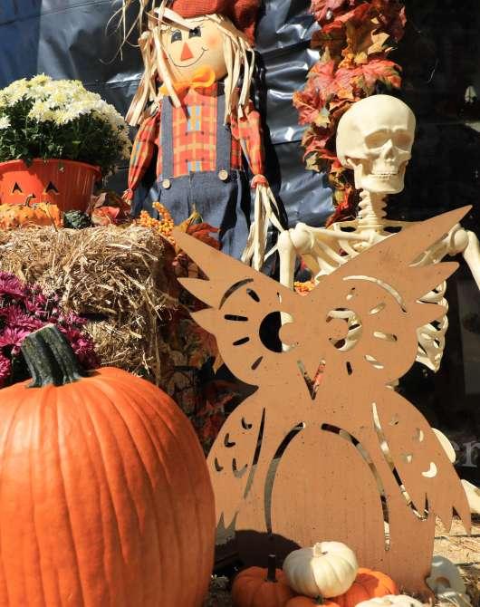 Fall decorations at Baxter's