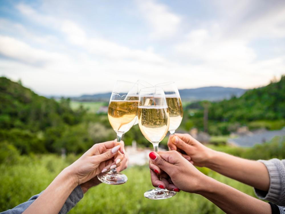 Group cheers with bubbles in Napa Valley