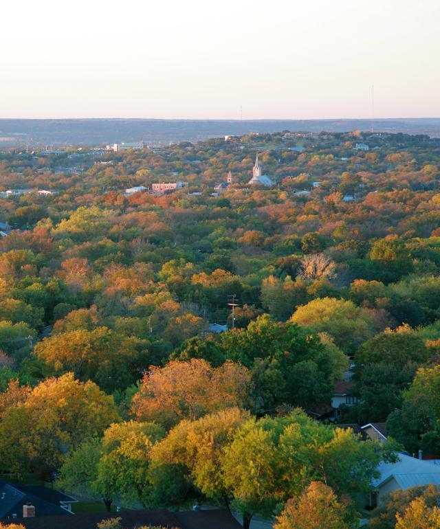 Trees Fall Foliage Aerial