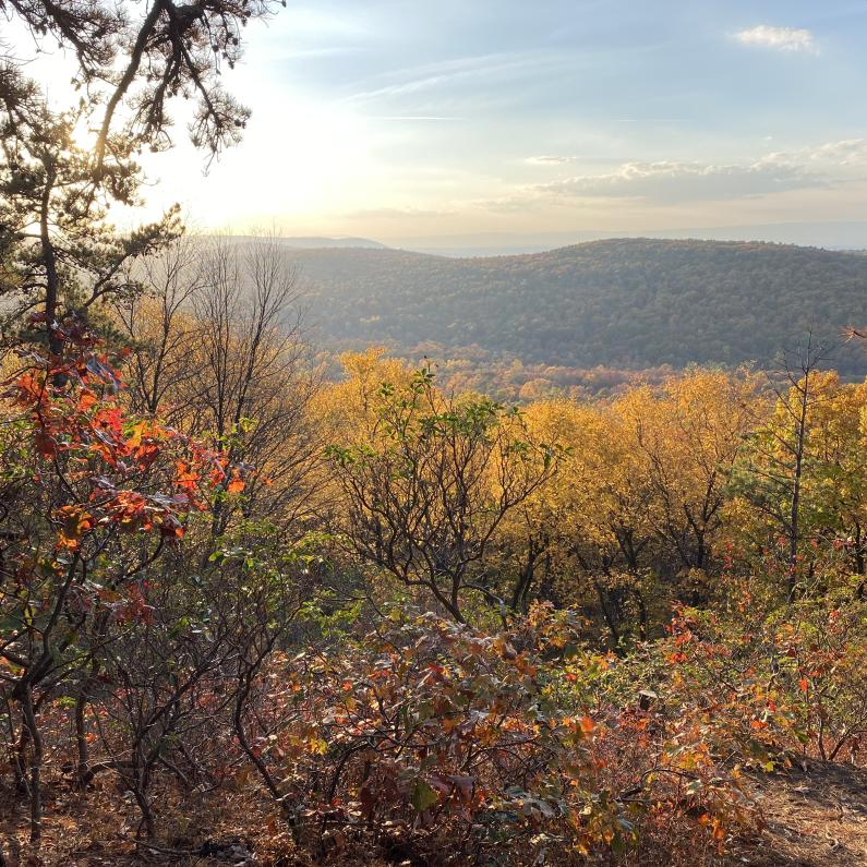 View from the top of King's Gap in the fall