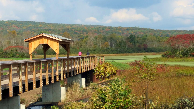 Birdseye Hollow Pond Hike by Nancy Peek