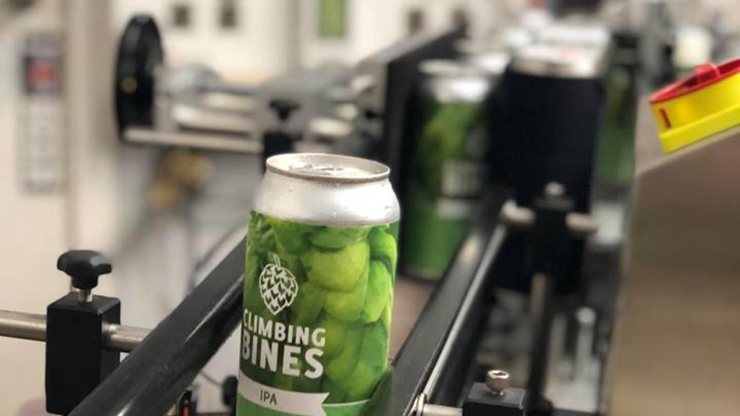 Climbing Bines cans