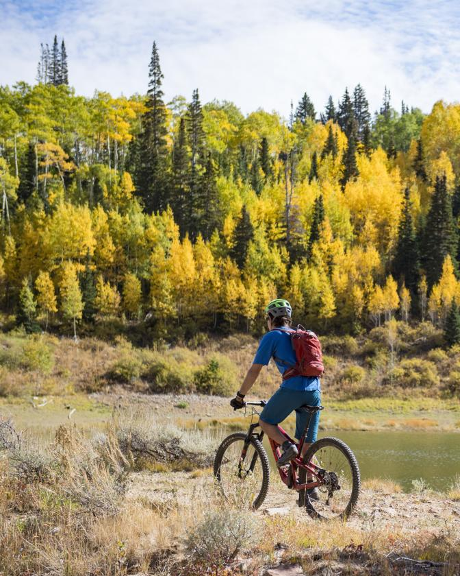Two people mountain biking with fall foliage in background