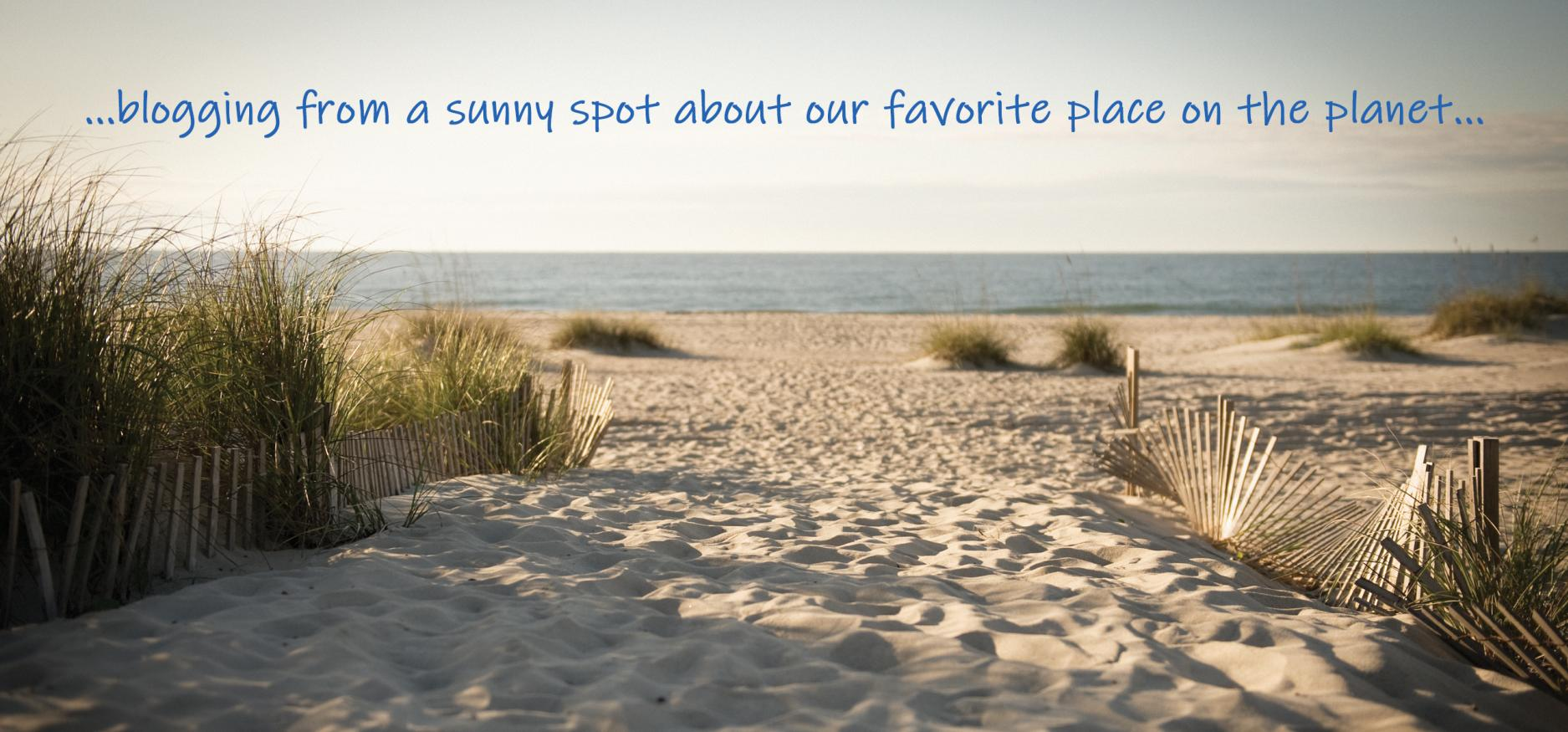Beach Path - blog header