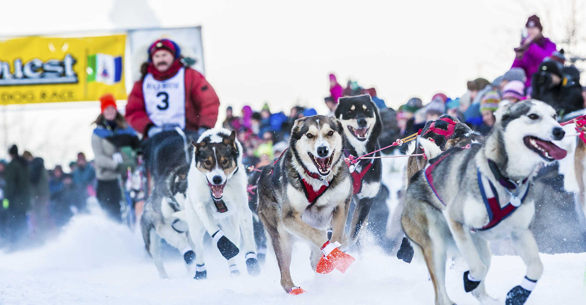 Christmas 2020 Events Fairbanks Ak Winter Events | Explore Fairbanks, Alaska