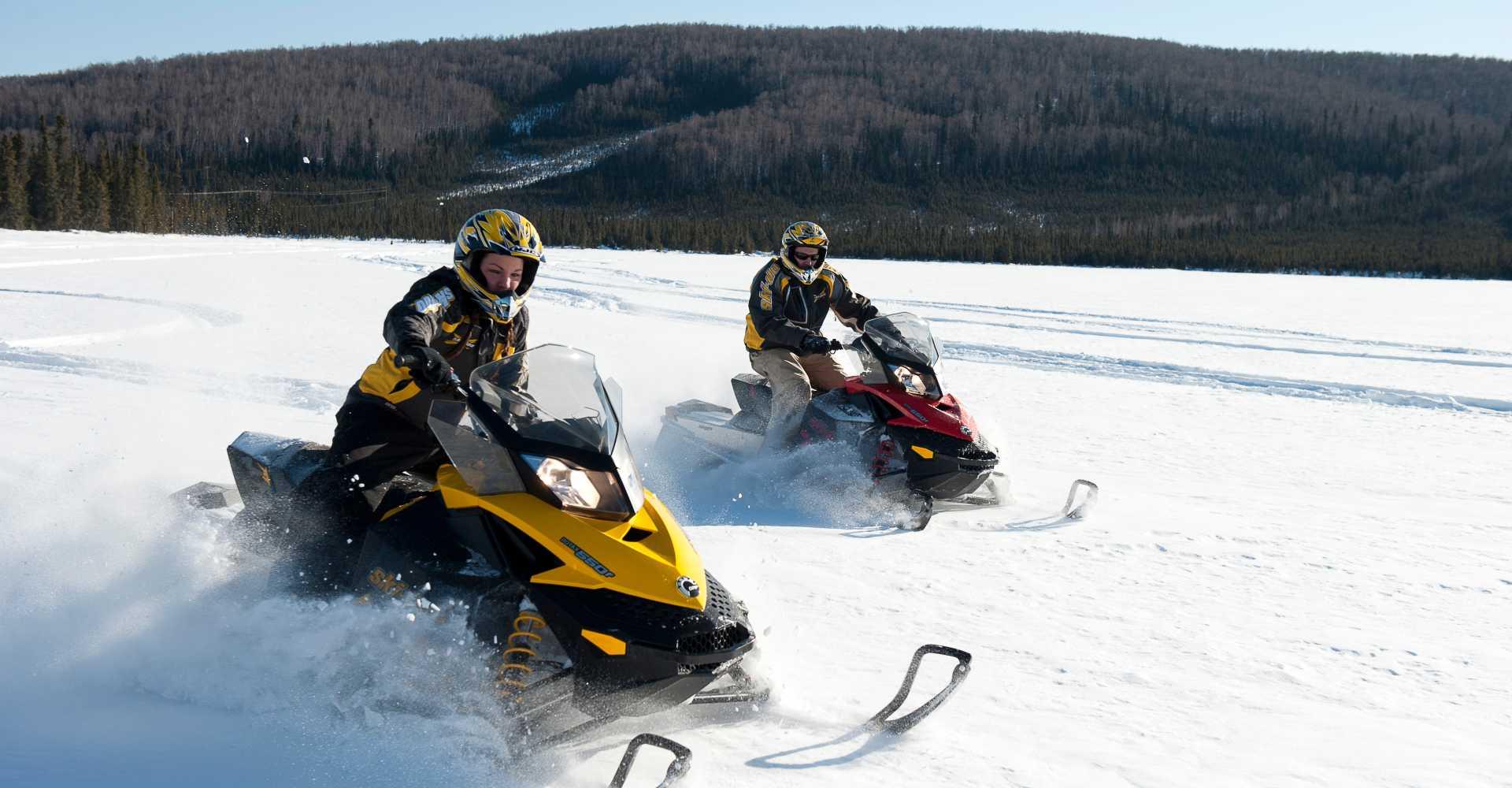 Image result for fairbanks winter activities