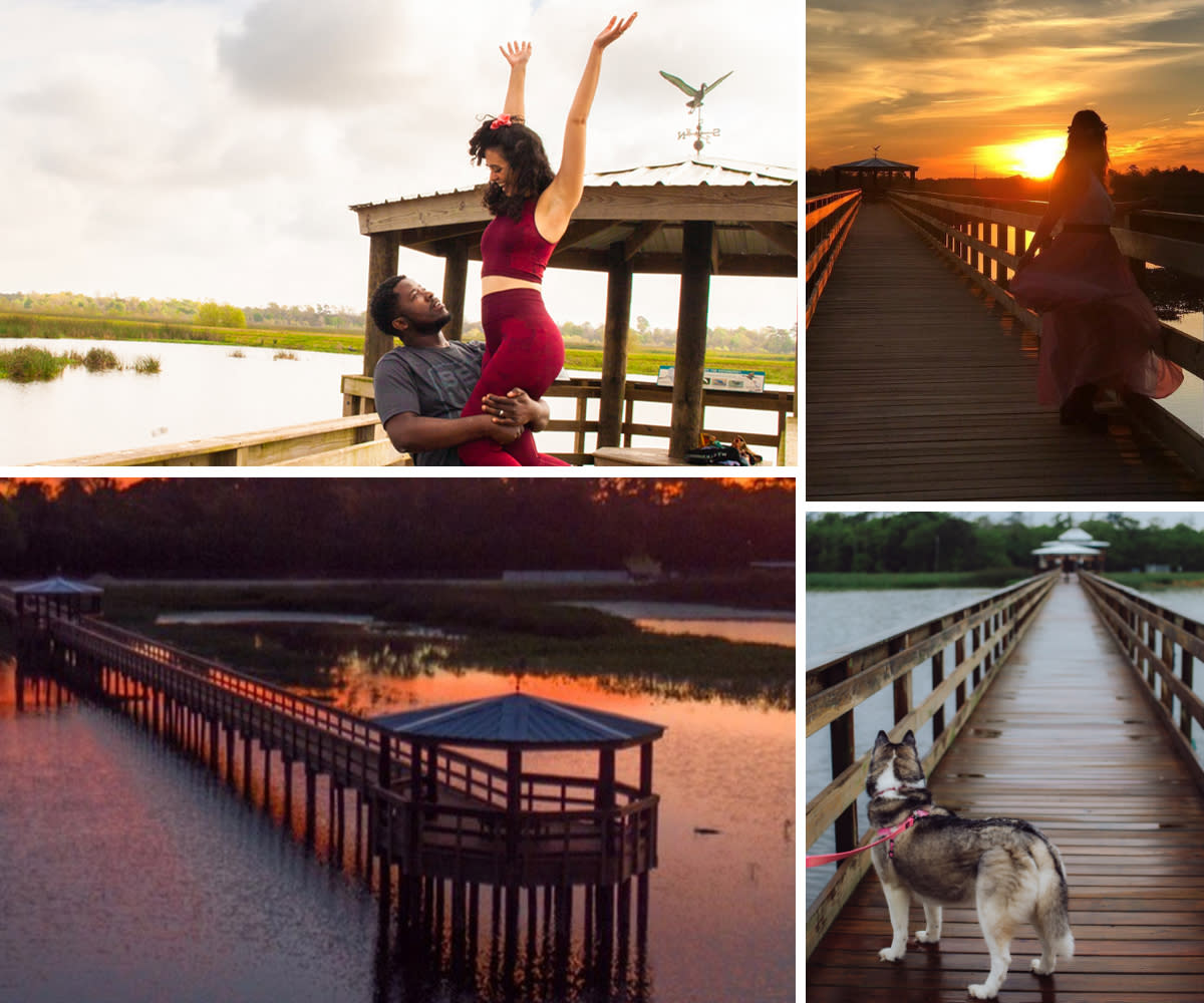 A collection of images showing off the boardwalk at Cattail Marsh in Beaumont, TX.