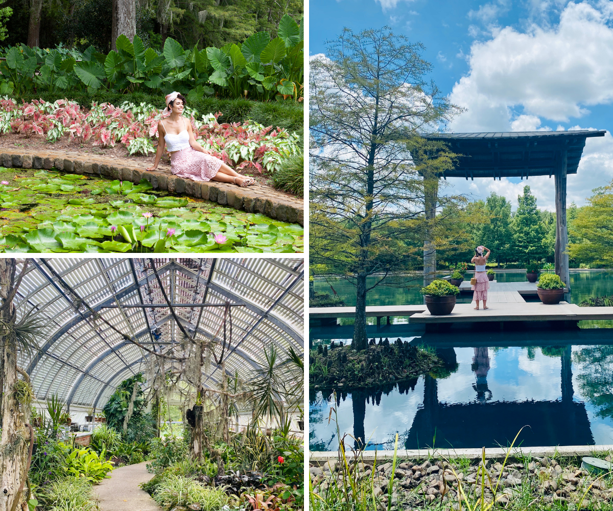 A series of pictures showing off the instagramable natural beauty of Shangri La Botanical Garden