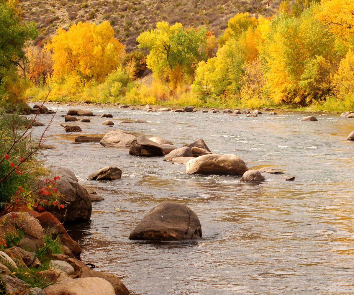 Animas River During Fall