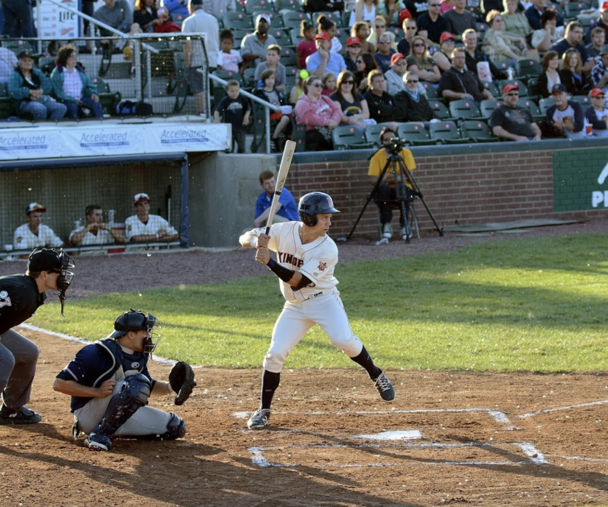 Kenosha Kingfish Player At Bat