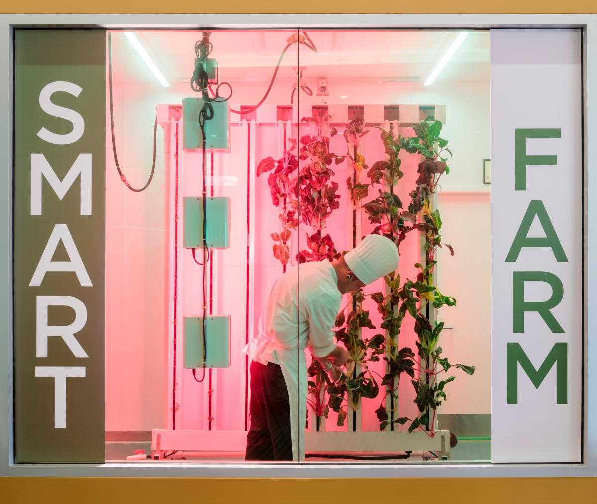 The Smart Farm inside the Greater Columbus Convention Center
