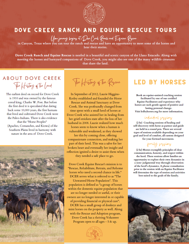 Dove Creek Equine Rescue Tour Information