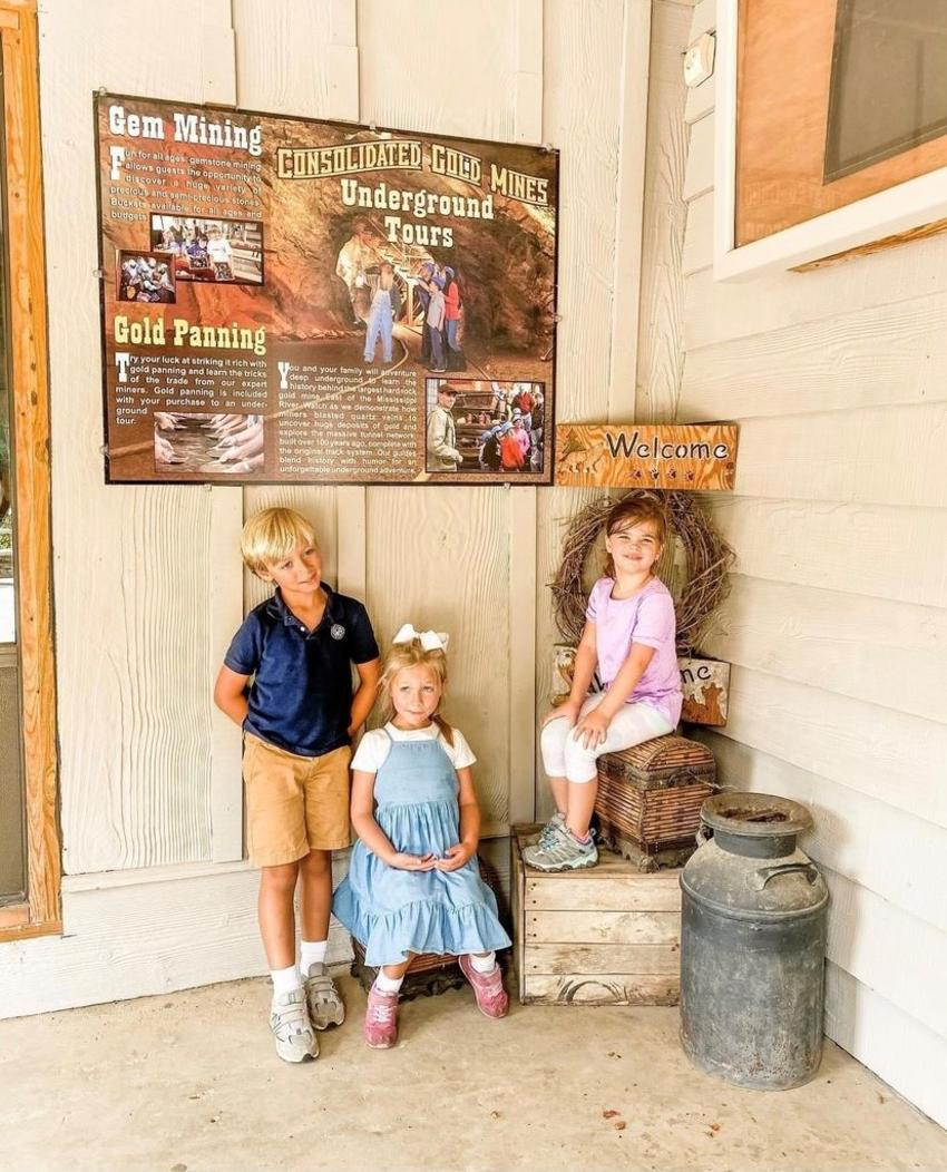 Consolidated Gold Mine - Family