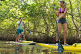 Standup Paddleboarding the Mangroves Near Don Pedro Island