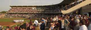 Aggie Baseball Crowd