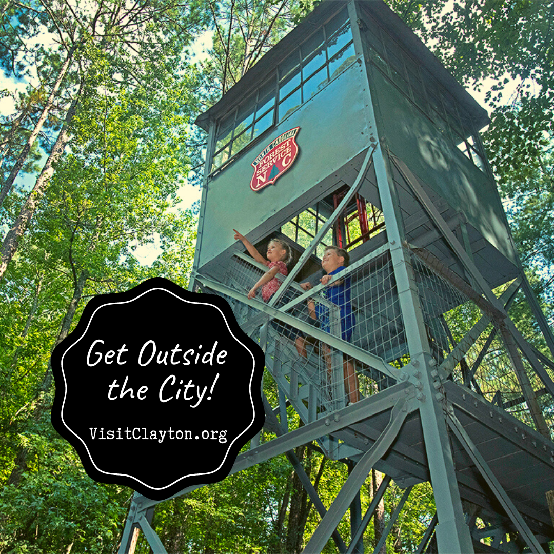 Two kids pose at the top of a forest fire tower