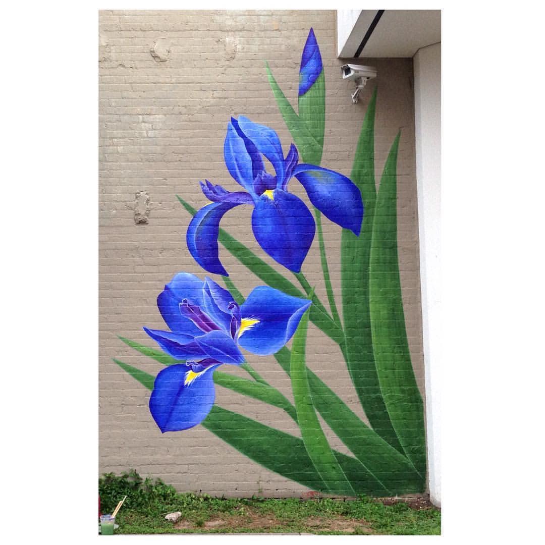 Mural of an Iris by  Kelli Smith in Lafayette, LA