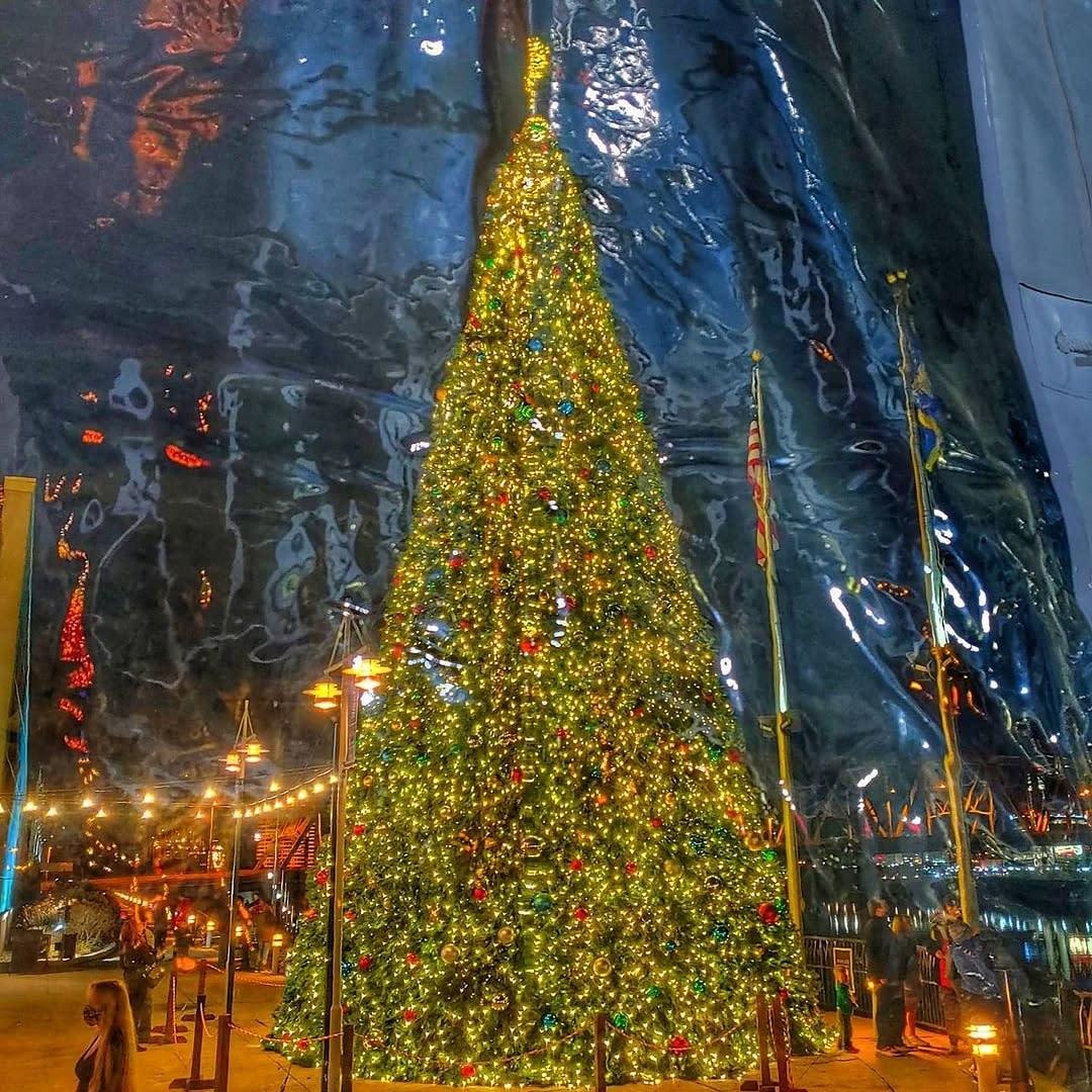 Christmas tree at Bridgeview Box Park