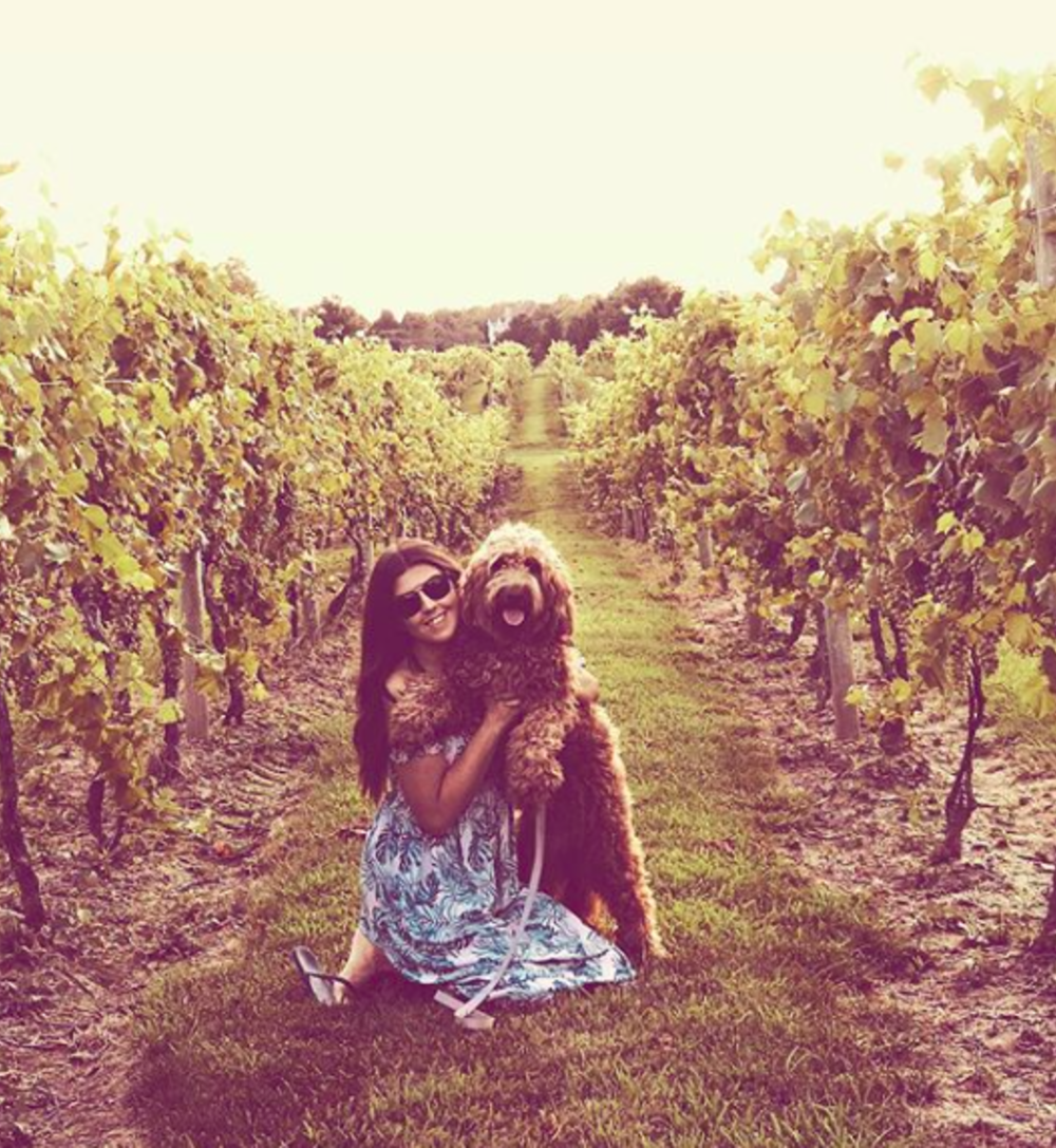 A woman with her dog at crossing vineyards