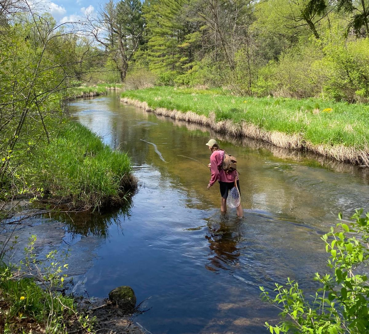 fishing, fly fishing, river