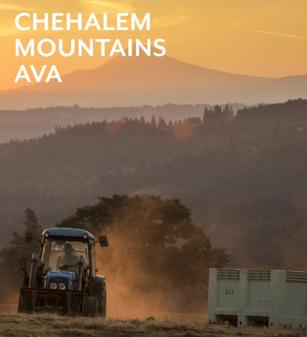 chehalem-mountains-ava