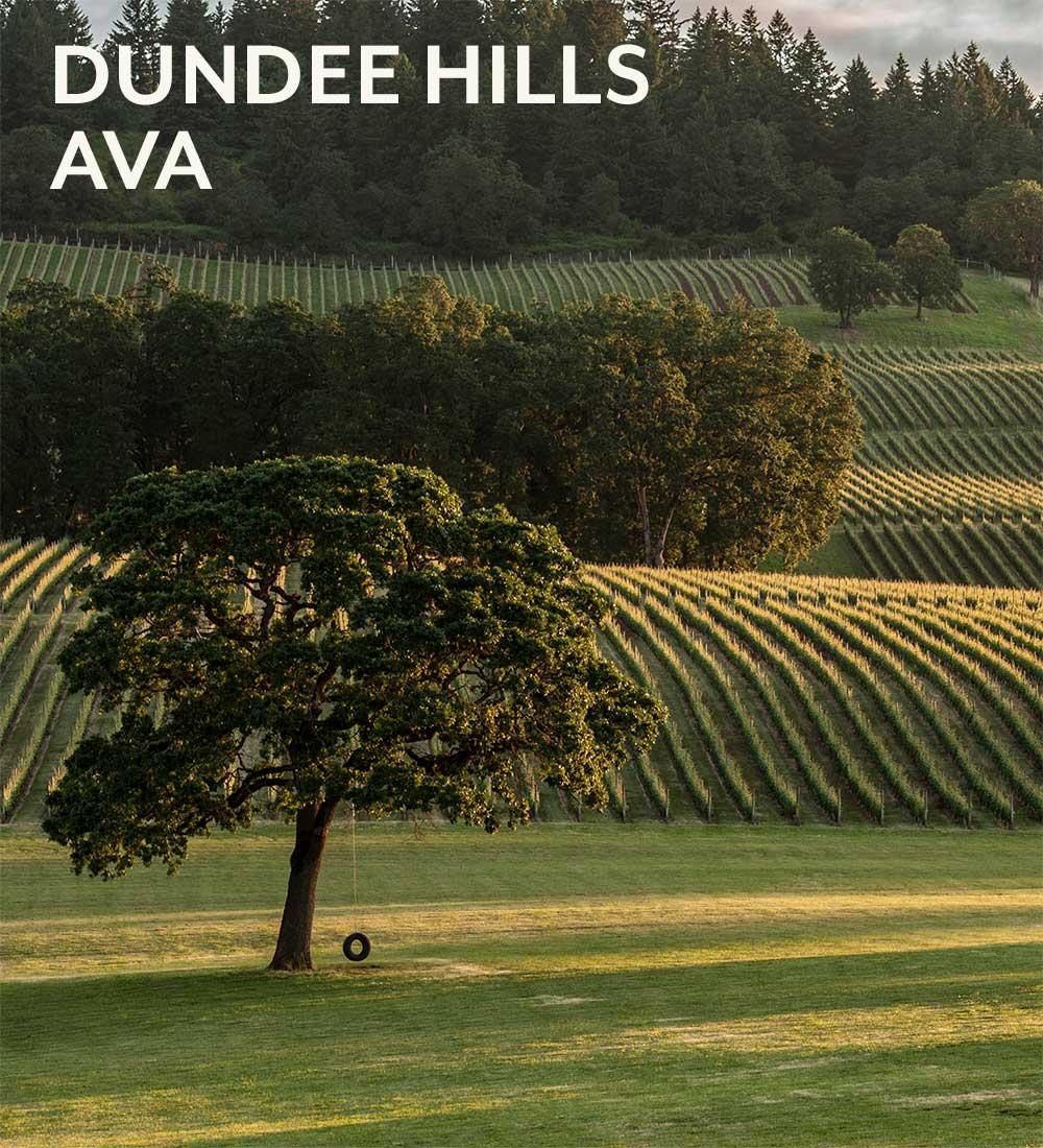dundee-hills-ava-tree