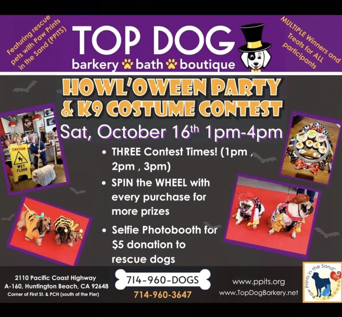 Top Dog Barkery in Huntington Beach, CA is throwing a Howl'Oween Party & K9 Costume Contest on October 16