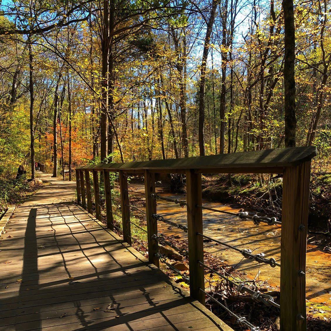 Rotary Park - Fall Bridge