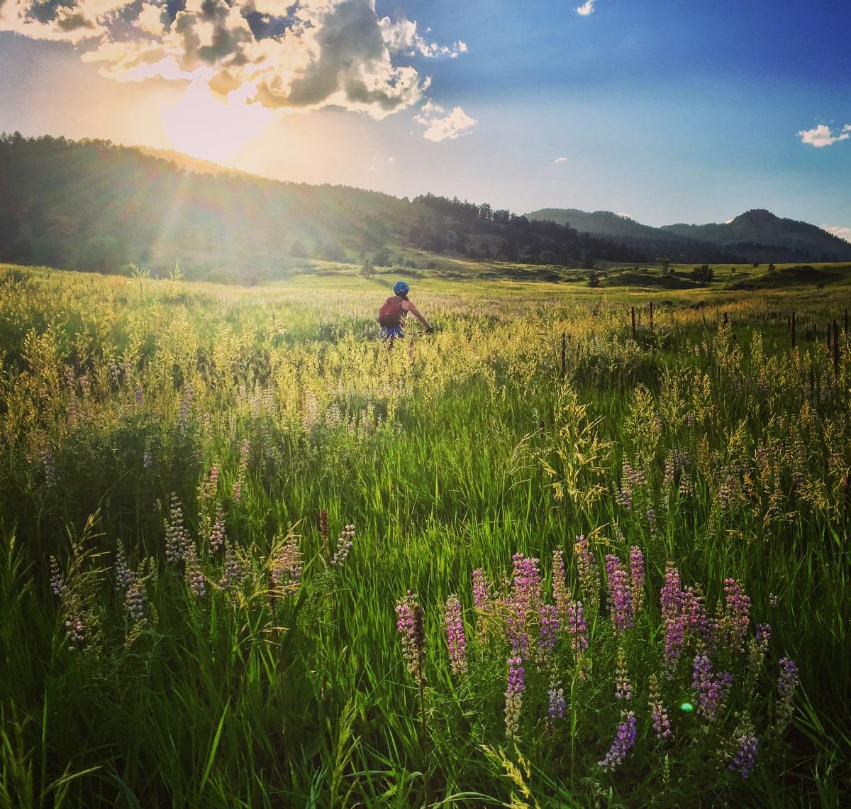 Mountain Biking in Fort Collins