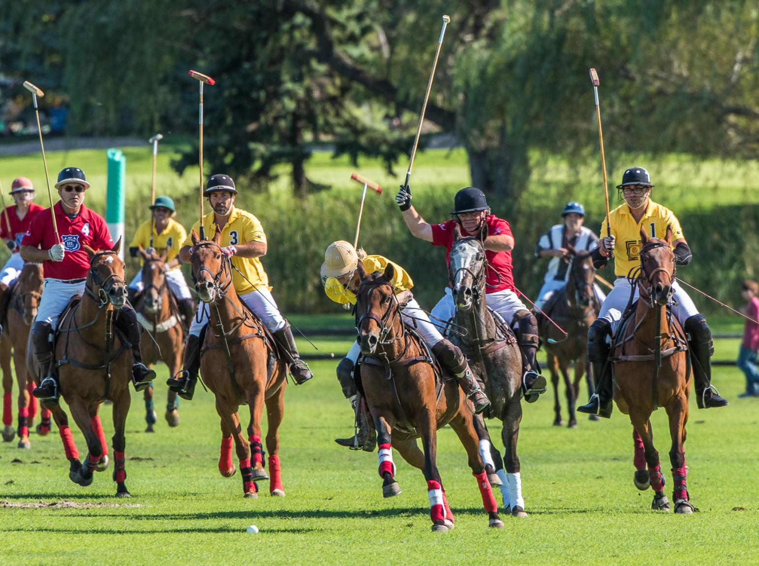 People on horseback playing Polo in Oak Brook