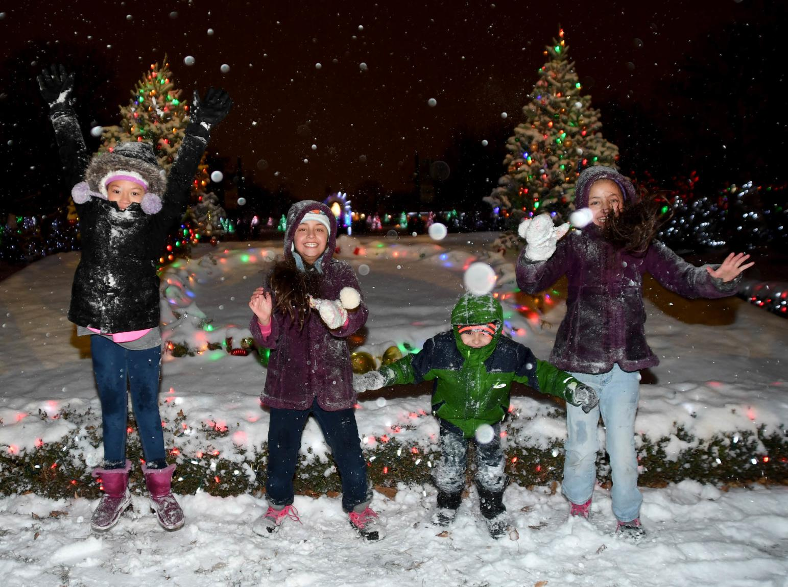 Brookfield Zoo Holiday Magic