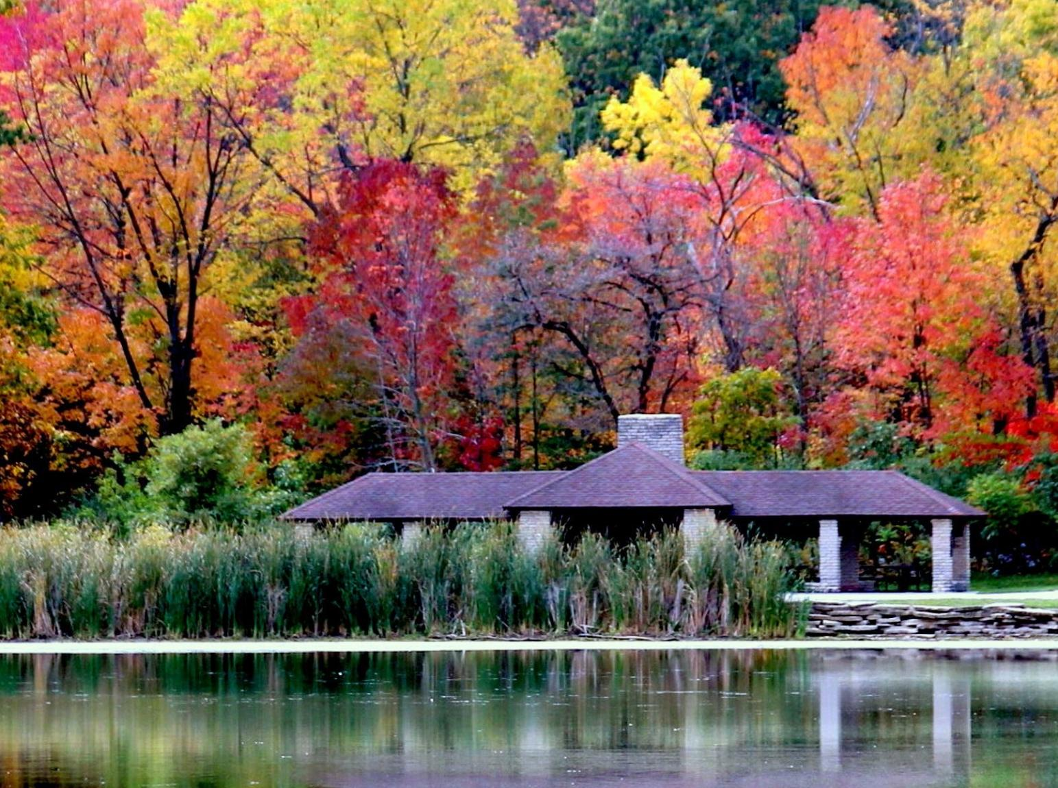 Herrick Lake Forest Preserve in fall with vibrant colors