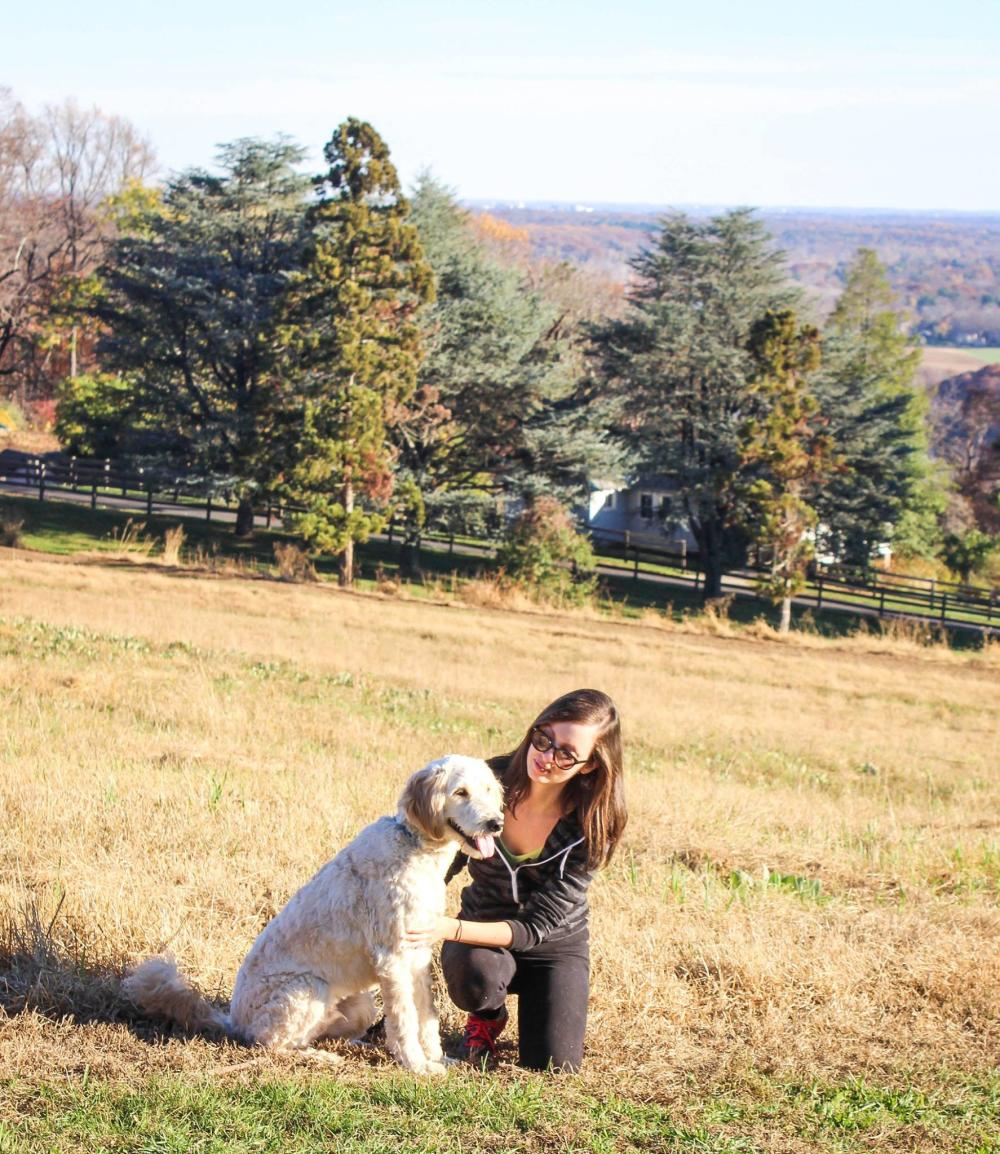 A woman and he dog Hiking at Baldpate Mountain Ted Stiles Preserve