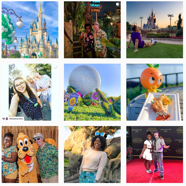 The Disney Fox on Instagram